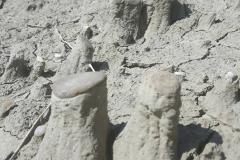 Volcan-de-boue-de-Berca_07-09-2018_14