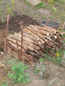 Le tas de bois mort jardins nature admise for Cendre de bois au jardin
