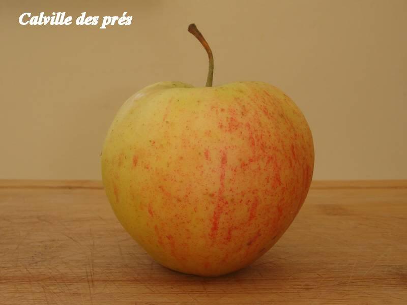 Calville-des-pres_01