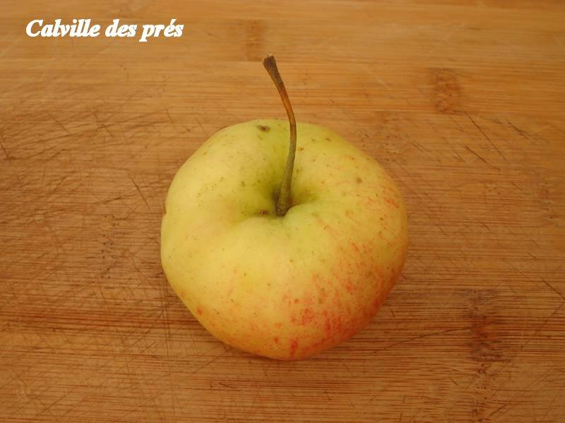 Calville-des-pres_02