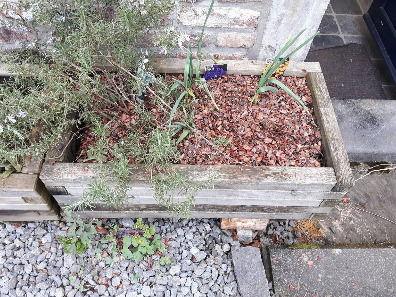 jardiniere_01_15-04-2018_01