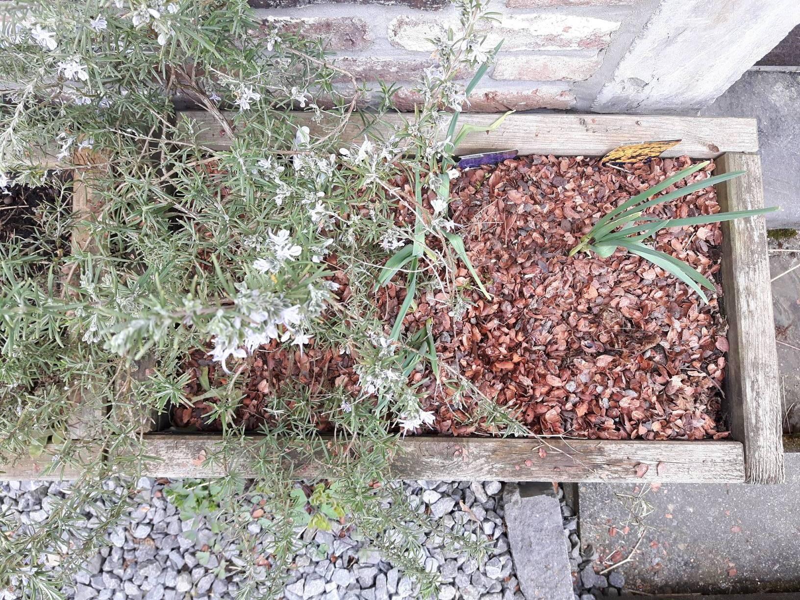 jardiniere_01_15-04-2018_02