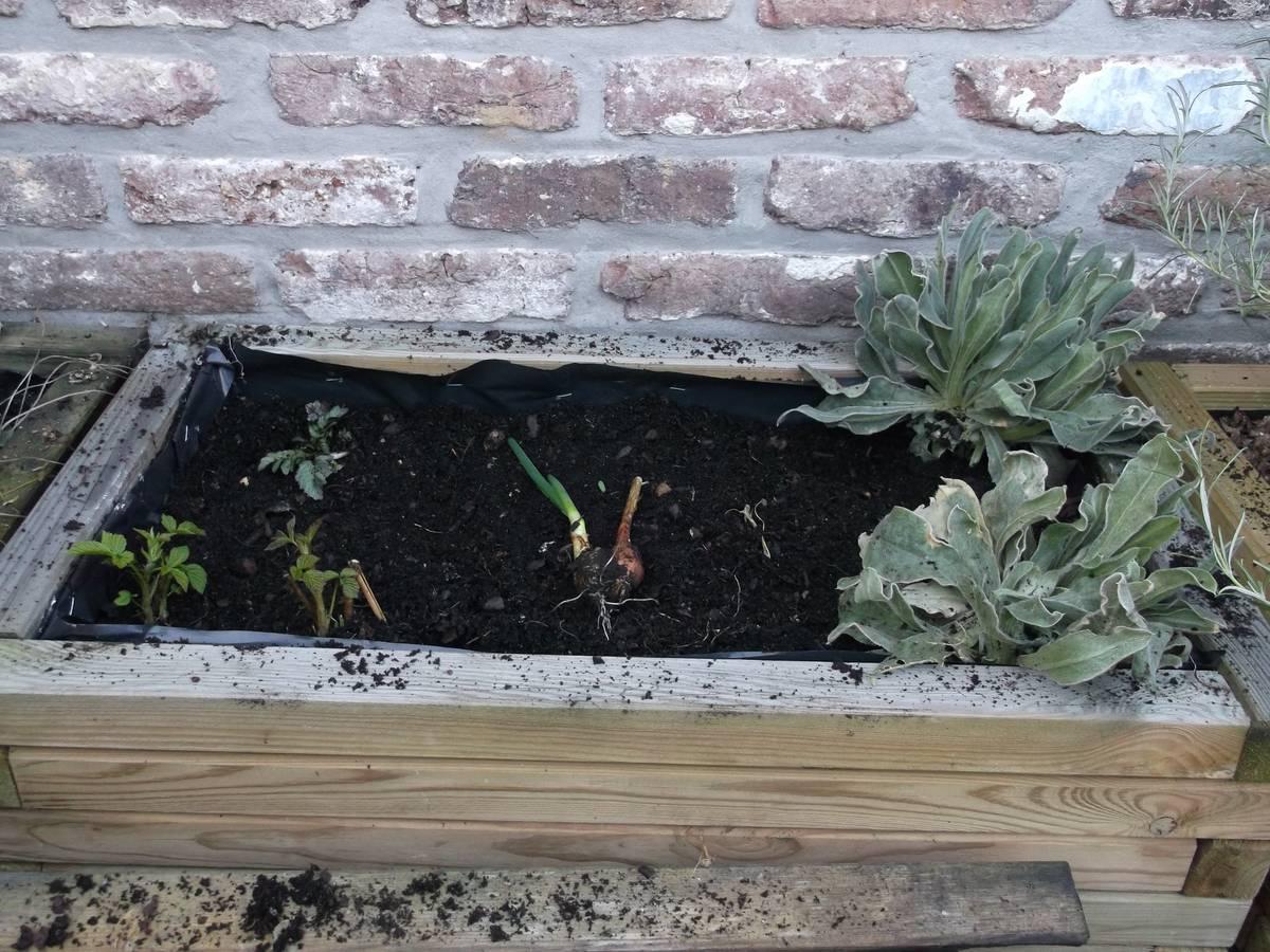jardiniere_02_09-03-2014_02